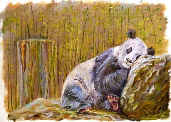 сонная панда этюд маслом