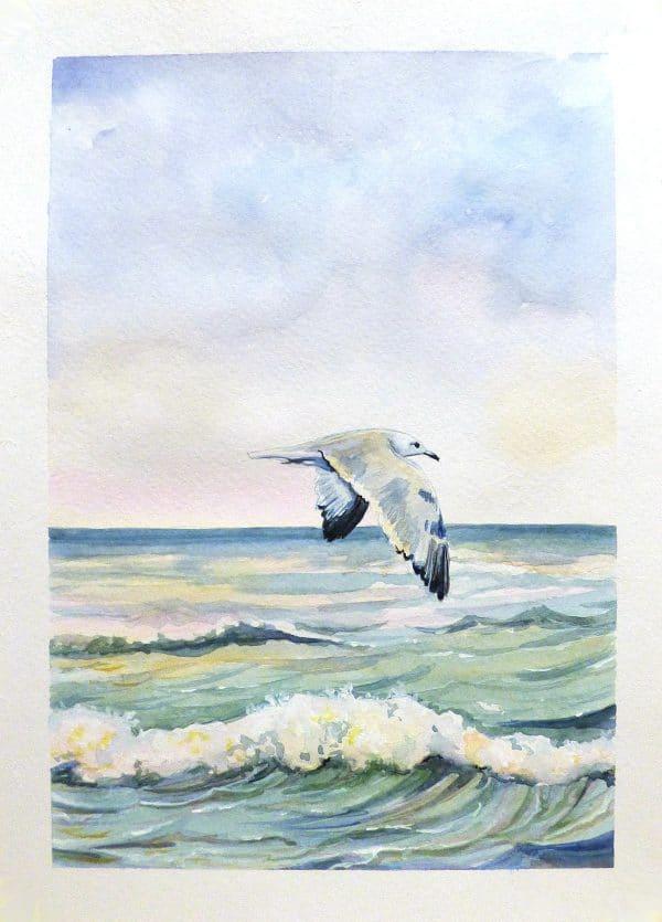 чайка акварельная картина